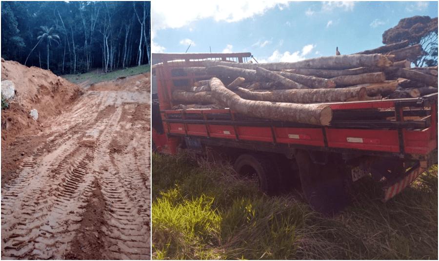 Polícia flagra desmatamento e corte de talude em Nova Friburgo