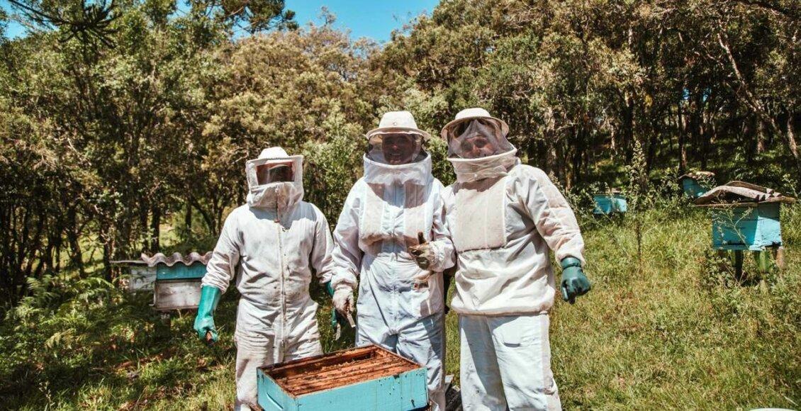 São Fidélis se destaca como maior produtor de mel do estado do Rio