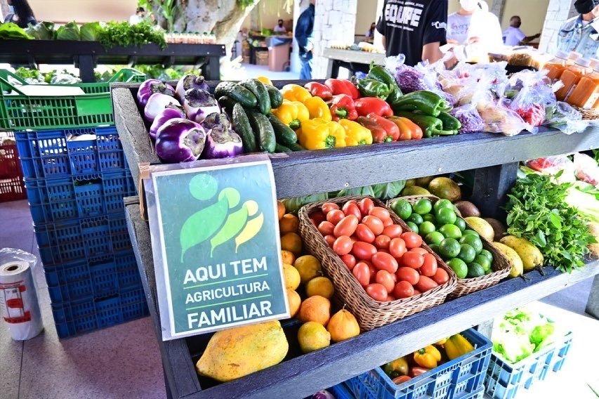 Governo do Estado quer criar Espaço do Agricultor nos municípios