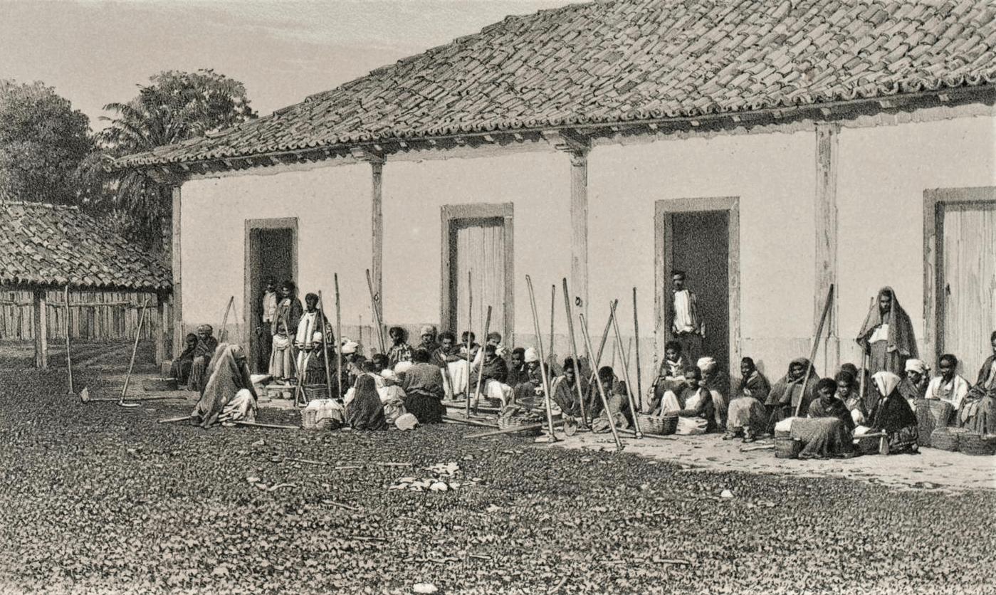 Victor Frond. 1861. Acervo Coleção Brasiliana Itaú