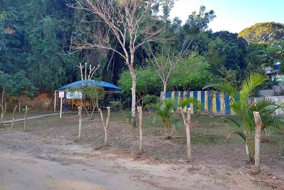 Moradores de Cordeiro indagam corte de árvores na APA Mata do Posto Zootécnico