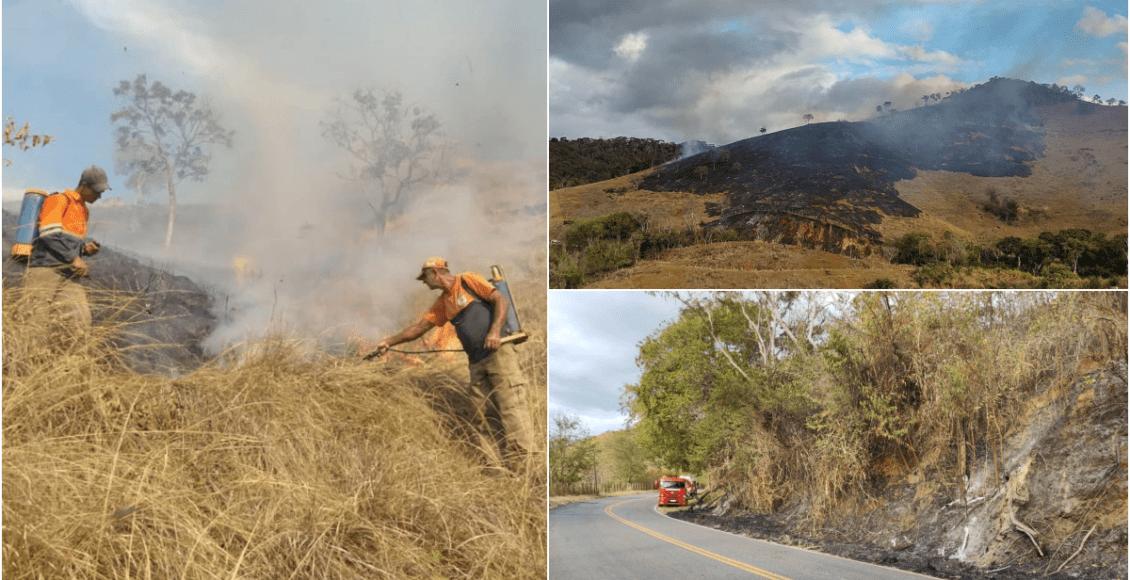 Incêndio criminoso é contido às margens da RJ-116 em Macuco