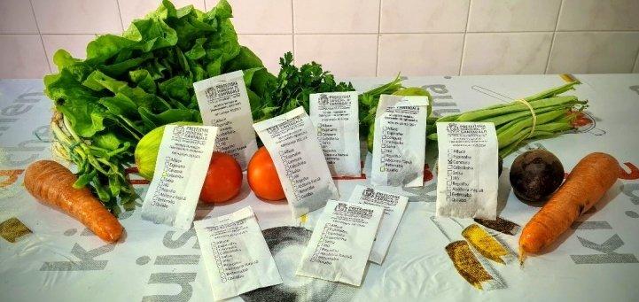 Distribuição de sementes de hortaliças incentiva hortas domésticas em Cantagalo