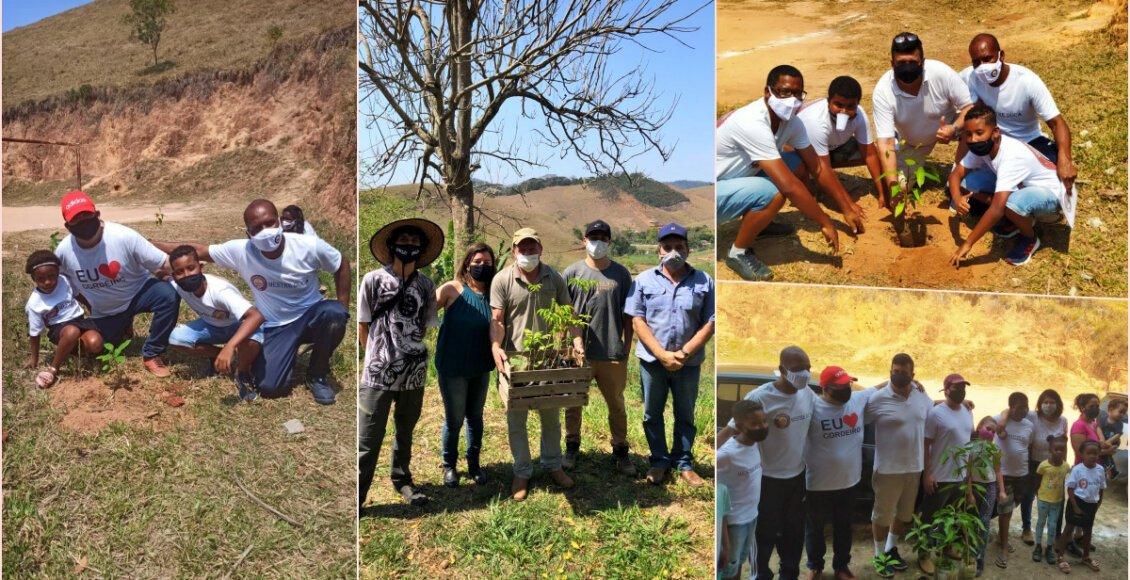 APAs de Cordeiro recebem plantio de mudas de árvores