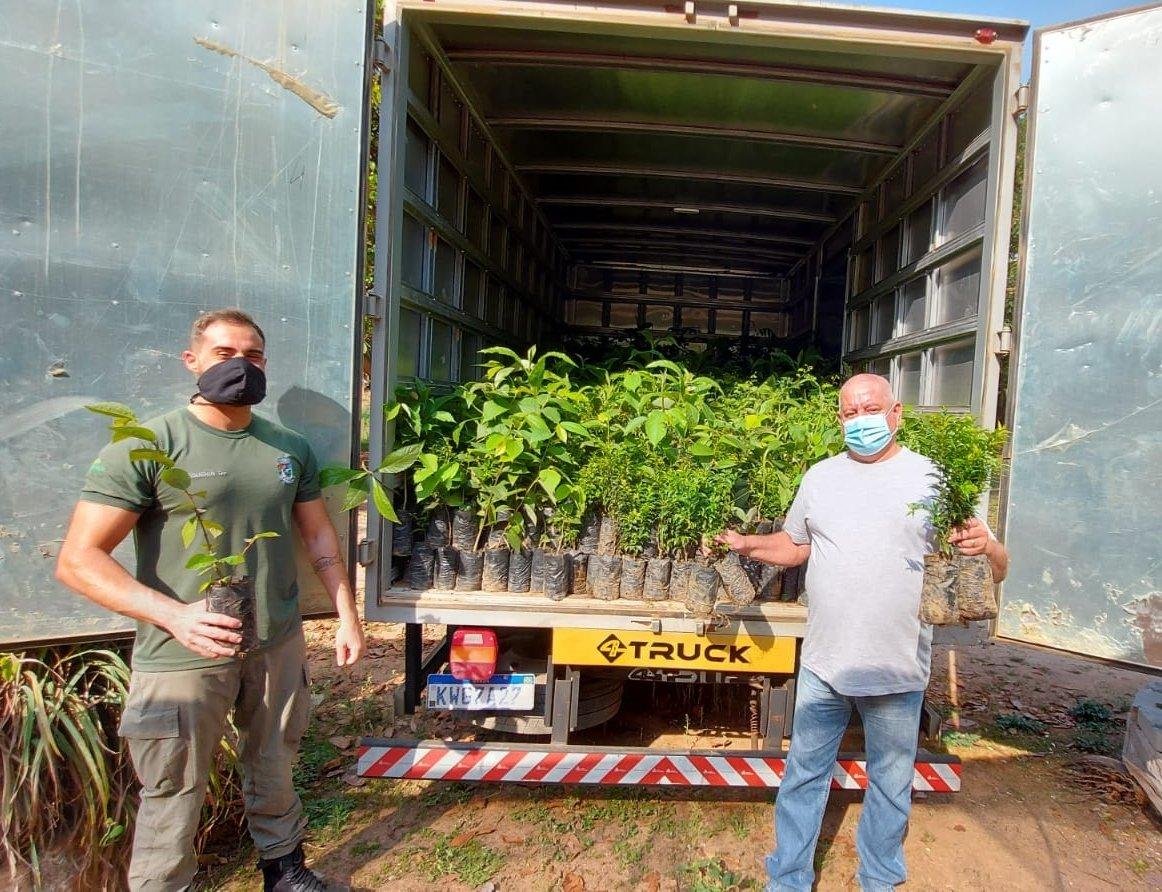 Cantagalo recebe mudas de árvores para doação do programa Replantando Vida