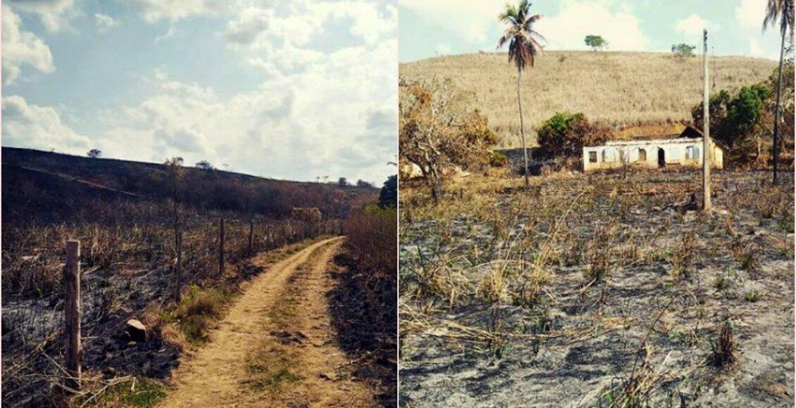 São Fidélis: Polícia investiga área de aproximadamente 200 hectares devastada